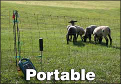 Portable Sheep Fence