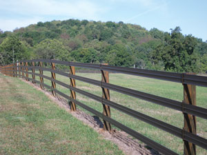 HotTop&#174 Plus Fence Rail 4¼""