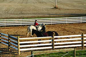 HorseRail<span style='vertical-align: super;'>&#174;</span>6.25&QUOT;