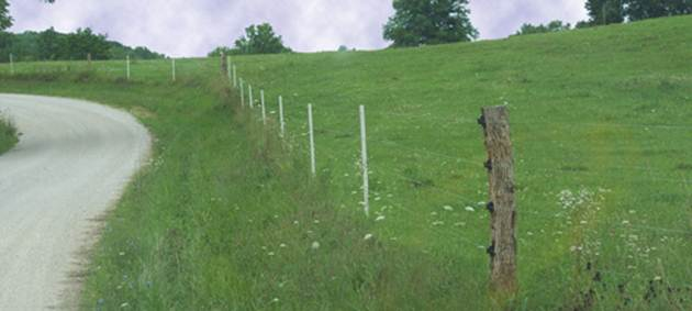 PasturePro posts used in combination with wood posts