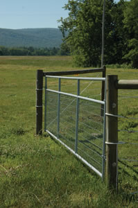 Mesh Wire Gate 14