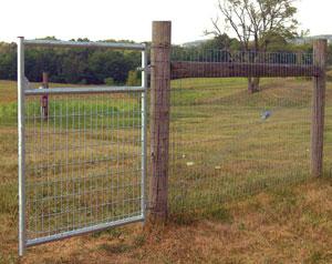 Mesh Wire Gate